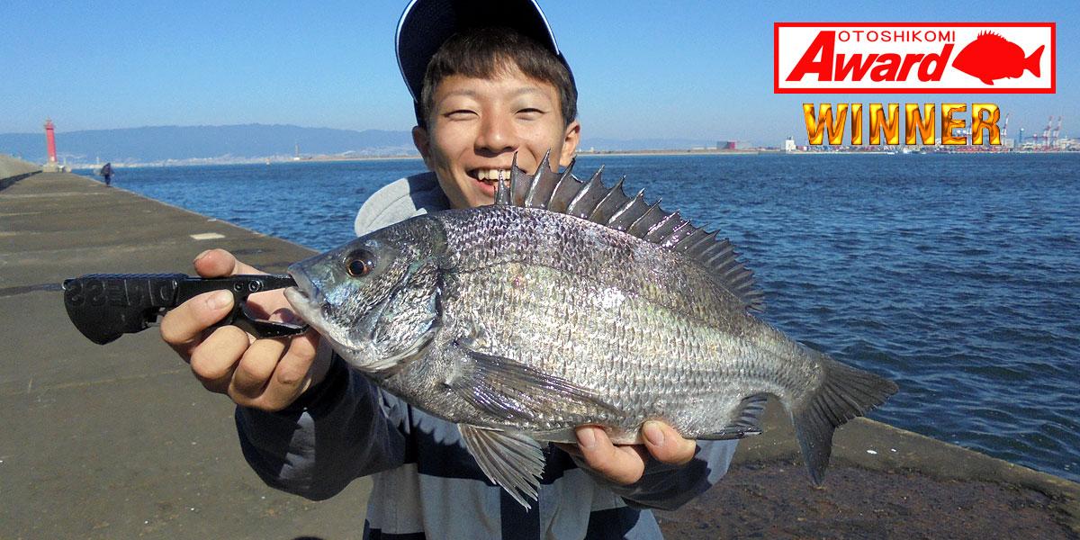 『東京湾黒鯛落とし込みバトル』チャンプ